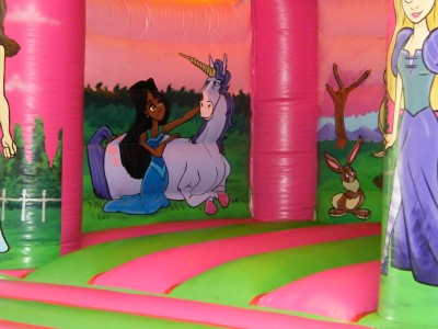Palace Princesses Castle with small Slide Inside Wall picture of Unicorn